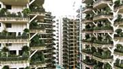 Trung Quốc ra mắt 'chung cư trong rừng cây', giá 'cắt cổ' vẫn thu hút khách