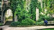 Khám phá 'khu vườn bí mật' đẹp như tranh ẩn sâu giữa lòng London