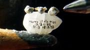 Nghệ nhân khắc 3 chú lợn con siêu nhỏ trên một hạt gạo