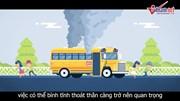 Bí kíp thoát thân cần thiết khi xe buýt bị lật, bị cháy
