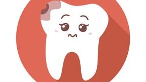 Động vật thay cả nghìn cái răng, tại sao răng người không mọc lại?