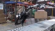 Robot bốc dỡ hàng hóa siêu nhanh và chính xác