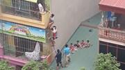 Cháy trường mầm non tư thục, người dân trèo tầng 4 giải cứu nhiều cháu nhỏ