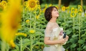 Thỏa sức check-in cùng 30.000 cây hoa hướng dương ngay tại Hà Nội