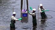 Hà Nội làm sạch sông Tô Lịch bằng công nghệ 'thần kỳ' của Nhật