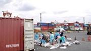 Căng thẳng vì rác, Philippines đóng thùng nghìn tấn chất thải gửi Canada