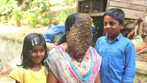 Bà mẹ 2 con ở Ấn Độ thản nhiên cho ong bu kín mặt