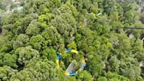 Khám phá ống trượt nước đi xuyên rừng dài nhất thế giới ở Malaysia