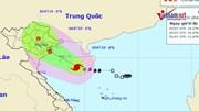 Bão số 2 gây mưa diện rộng, tâm bão Quảng Ninh-Ninh Bình