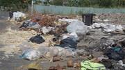 Dân Đà Nẵng khốn khổ vì bãi rác tự phát dài 150m gây ô nhiễm