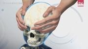 Nhằm khẳng định địa vị, người Trung Quốc xưa kéo dài hộp sọ như thế nào?