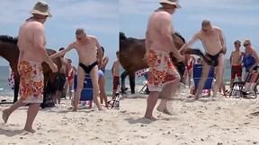 Du khách đau đớn khi bị ngựa hoang đá đúng 'chỗ hiểm'