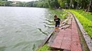 Lắp hàng rào tại điểm sạt lở ở Hồ Gươm
