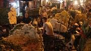 Giá hoa tăng cao giật mình trước Lễ Vu Lan
