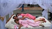 Người Colombia bỏ việc, bỏ học mừng ngày Thế giới Lười nhác