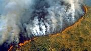 Rừng Amazon tan tác trong cơn hỏa hoạn tồi tệ nhất lịch sử
