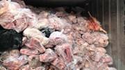Khui thùng container đầy ắp thịt heo thối ở Bình Dương