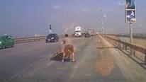 Hành động đẹp: Tài xế nhặt vật cản kích thước lớn trên cầu Thăng Long