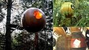Ngôi nhà hình bóng lơ lửng trên cây giữa rừng già như trong cổ tích