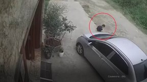 Bé trai đang ngồi chơi trước cửa nhà thoát chết khi bị ô tô cuốn vào gầm