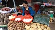 Chợ truyền thống đầu tiên ở miền Bắc 'nói không với túi nilon'