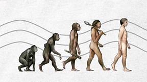 Nhìn lại những bước tiến hóa 'lỗi' của con người