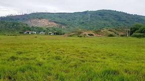 Nông dân Đà Nẵng bỏ ruộng 10 năm vì cống thoát nước gây ngập úng