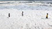 Sự thật đằng sau 'biển mây' xuất hiện ở bãi biển nổi tiếng nhất Ấn Độ