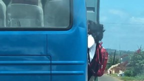 Nữ sinh bám cửa xe khách khi đang lên dốc ở Lâm Đồng gây xôn xao
