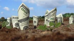 Khám phá dây chuyền biến hàng triệu đô la tiền mặt thành phân bón