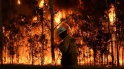Những con số 'biết nói' trong ngọn lửa 'địa ngục' ở Australia
