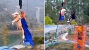 Thả lợn từ độ cao gần 70m, công viên nhận 'gạch đá' từ CĐM