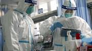 Số ca tử vong tăng lên gần 500, WHO tuyên bố chưa phải đại dịch toàn cầu