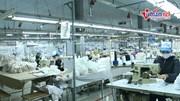 Công nhân tăng ca gấp rưỡi vẫn không đủ khẩu trang cho thị trường