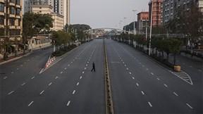 TQ: Nỗ lực tiếp tế cho Vũ Hán, phạt DN tiền tỷ vì bán bắp cải giá cao