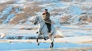 Triều Tiên chi bao nhiêu tiền cho đàn ngựa trắng siêu đẹp của ông Kim?