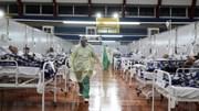 Covid-19: Hơn 300.000 ca tử vong trên toàn cầu, Brazil tiếp tục chạm đỉnh