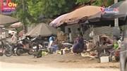 Chợ cóc họp ven đường quốc lộ ở Hà Nội, 'thần chết' treo lơ lửng