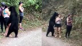 Bị gấu đen 'sàm sỡ', cô gái bình tĩnh rút điện thoại ''tự sướng'