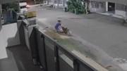 Thanh niên lái ô tô lao ra đường giải cứu người phụ nữ bị chó cắn