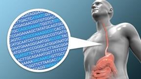 Dự đoán trước ung thư vòm họng tới 8 năm nhờ phân tích DNA