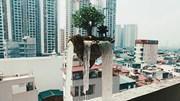Nghệ nhân bonsai đưa 'hòn đảo bay' từ phim viễn tưởng ra ngoài đời thực