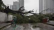 Bão Vamco càn quét Philippines, gây thương vong, mất tích, ngập lụt