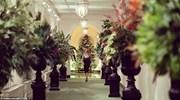Nhà Trắng lung linh đón Giáng sinh 2020 trong chủ đề trang trí đặc biệt