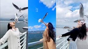Mê video 'sống ảo' mạng xã hội, thiếu nữ dùng miệng cho chim ăn