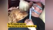 Chú chó luôn túc trực mỗi khi chủ đeo máy thở đi ngủ