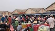 Chợ đầu mối Thủ Đức nhập 7.300 tấn nông sản một ngày cho thị trường Tết