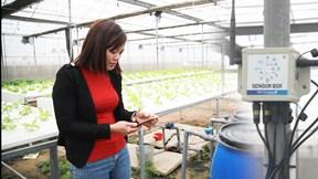 Ứng dụng IoT giúp giảm 70% sức người, nông dân thỏa ước mơ làm doanh nhân