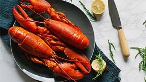 Vì sao tôm hùm từng bị coi là gián biển, dùng làm thức ăn cho tù nhân?