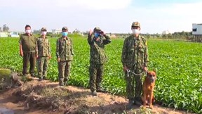 Siết chặt biên giới với Campuchia chống dịch Covid-19